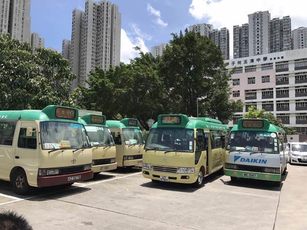 金旅考斯特公共巴士即将投入运营